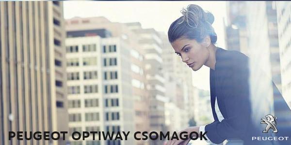 Peugeot_optiway
